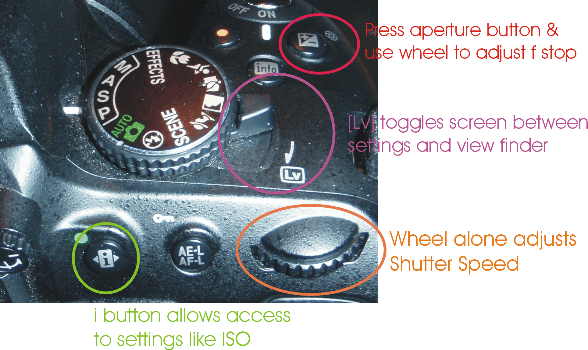 camera options